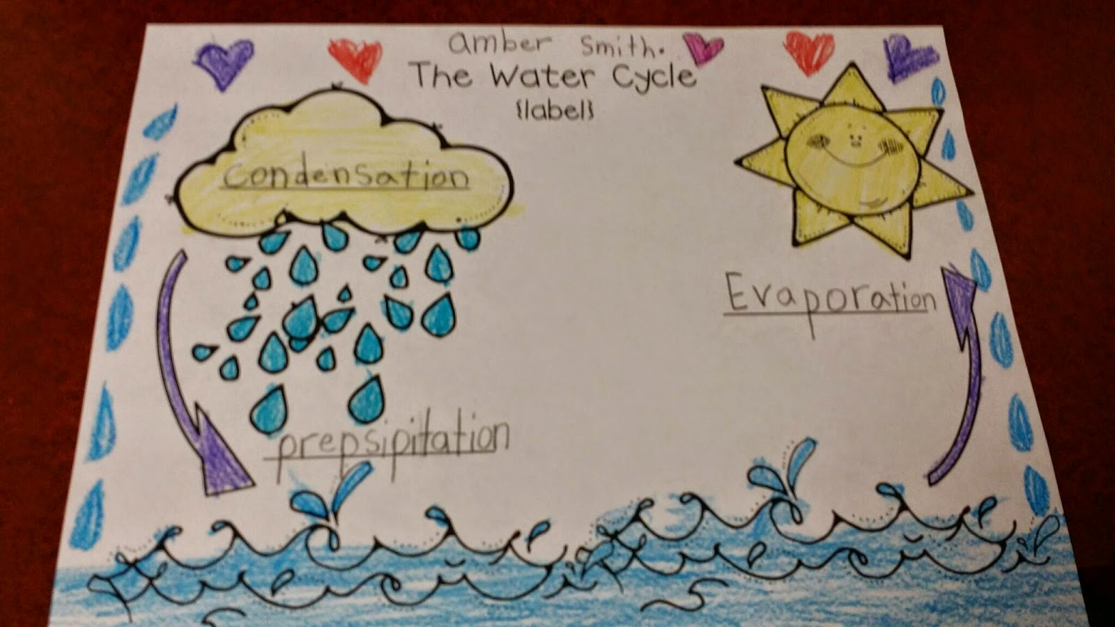 Mrs Peterson S 1st Grade The Water Cycle