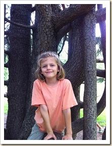 sweet girl in a cool tree
