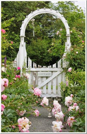 Fishtail Cottage Fishtail Cottage's Garden 52614