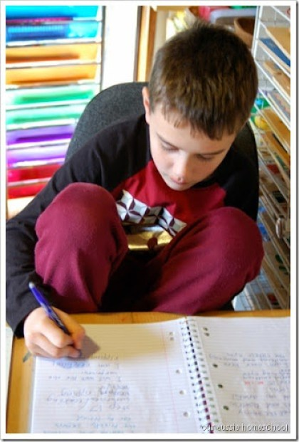 A peak at our homeschool ~ Our Aussie Homeschool