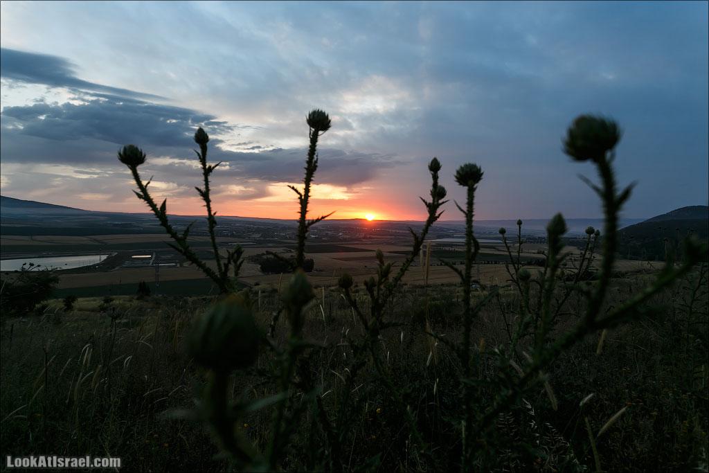 LookAtIsrael.com: Фото-блог о путешествиях по Израилю. Тель Авив, Иерусалим, Хайфа А потом еще до поздней ночи мы пекли мацу и ели жаренное мясо.Ночью проснулись от равномерного постукивания - шел дождь. Сработавший будильник заставил высунуть нос из палатки, а там…..