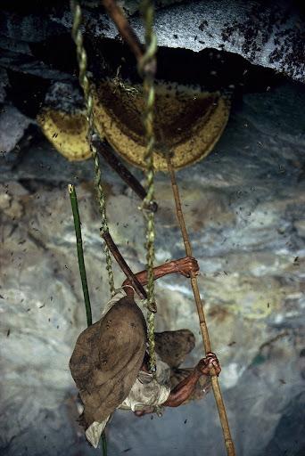 honey-cacciatori-nepal-6