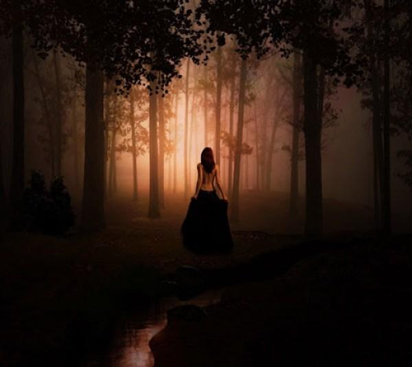 Un espacio en el bosque