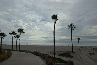 a beach hauled in at the Hotel Del Coronado