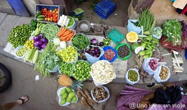 India-Kerala-fotos-con-colores-4.jpg