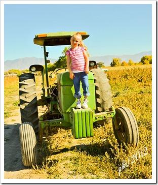 DSC_4061Kaylin-tractor