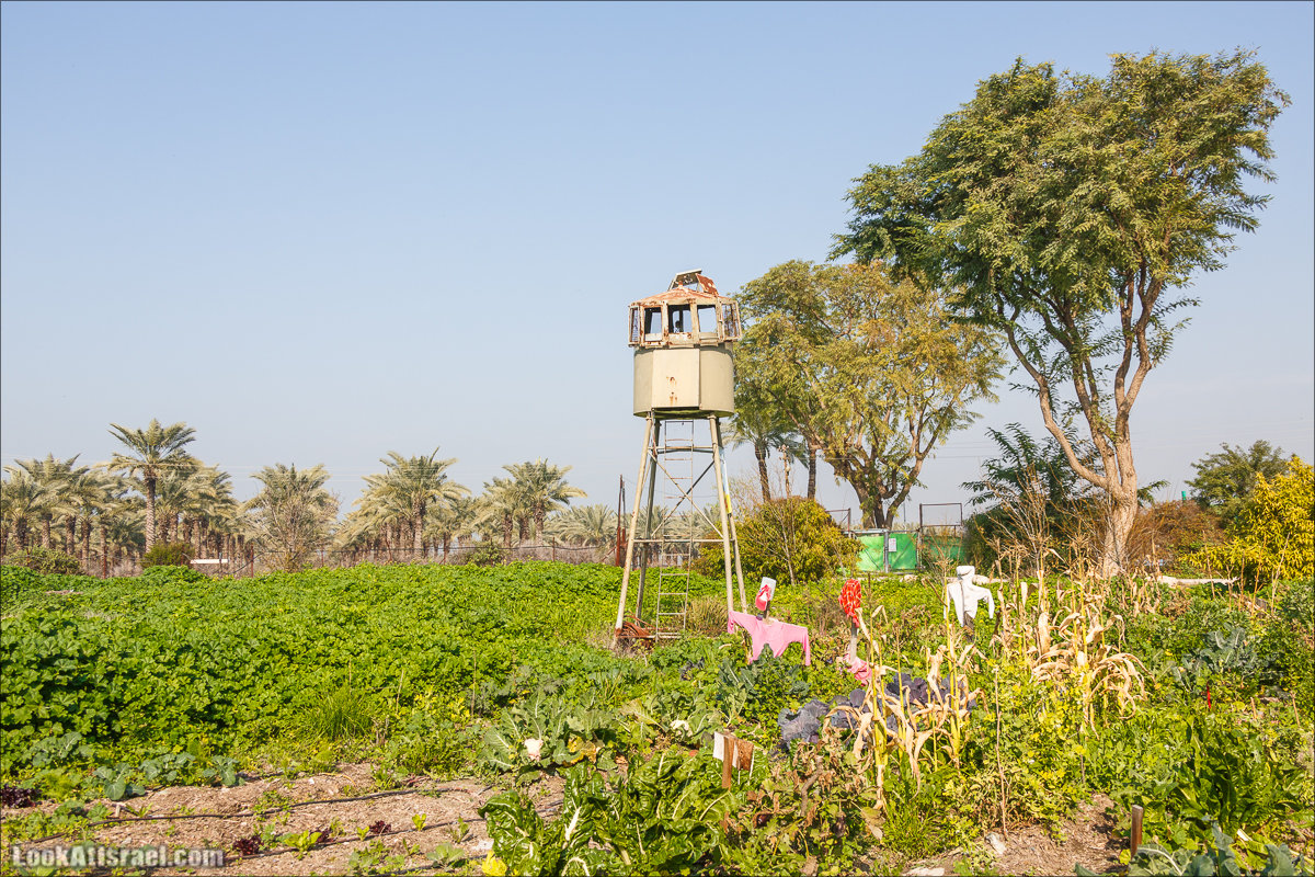LookAtIsrael.com - Киббуц Кфар Рупин | Kibbutz Kfar Rupin | קיבוץ כפר רופין
