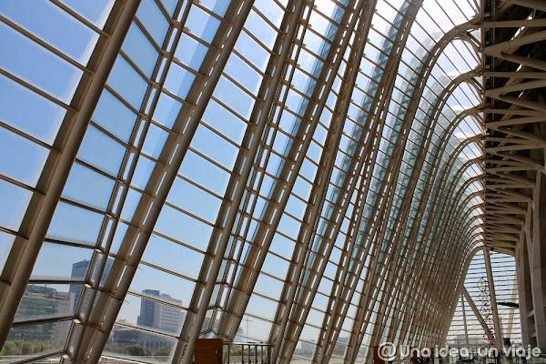 ciudad-artes-ciencias-valencia-unaideaunviaje.com-10.jpg