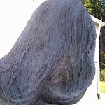 IMG_20120916_102721.jpg