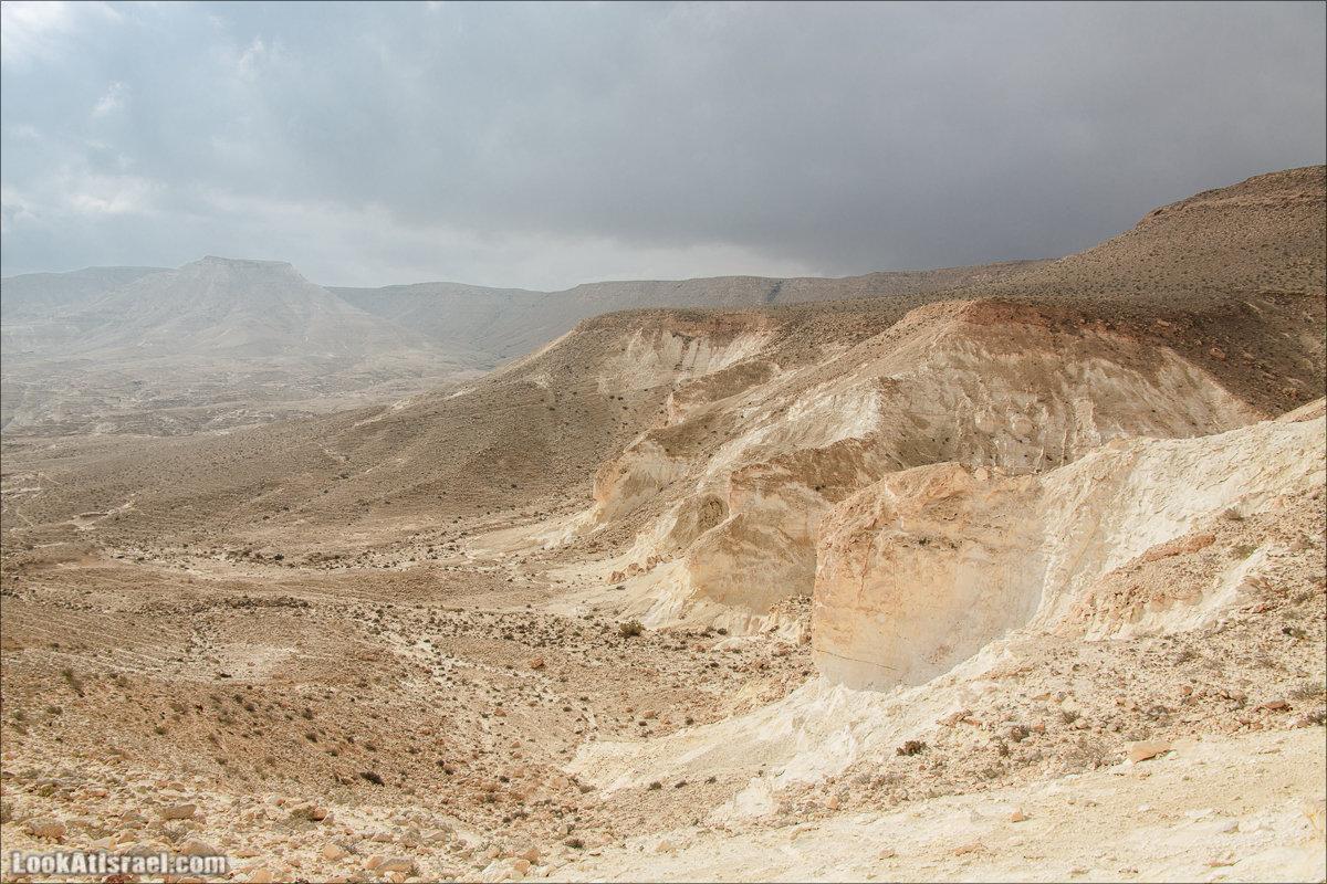 Негев - пустыня где нет пустоты