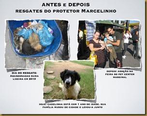 marcelo_vieira (29)