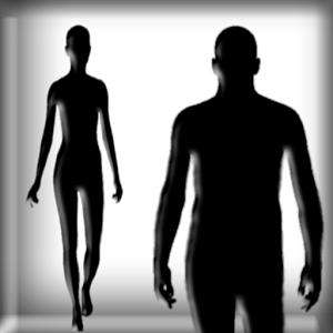 FASHION BMI