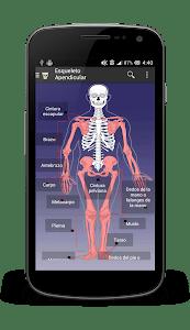 Skeleto screenshot 1