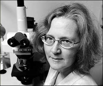 elizabeth blackburn Elizabeth blackburn is a nobel prize-winning molecular biologist and a professor at the university of california, san francisco her research is focused on understanding a critical structure at the end of chromosomes, called the telomere, which protects dna during the cell division.