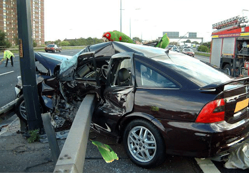 accident2.png