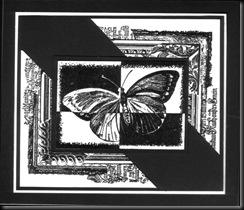 flutterby frame