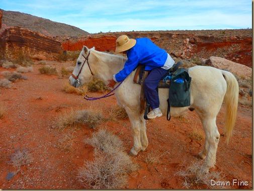 horseback riding with merrilee_003