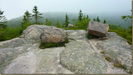 Gorham mt hike_089