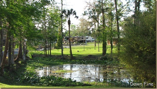 Wilderness rv park_017