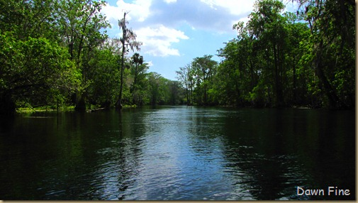 Silver Springs State Park_154