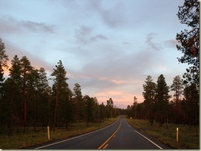 Sunset Hwy 67 S Kaibab National Forest Arizona