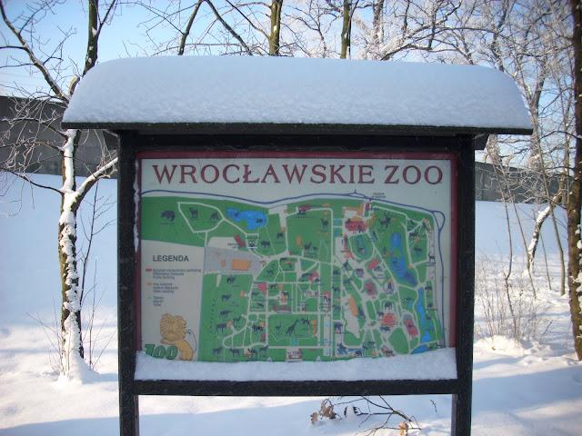 Wrocławskie zoo pełne śniegu!