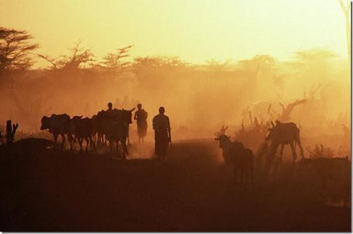 photo_lg_somalia