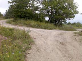 Radan: Ivanje – strugara – Petrov vrh – Borince – Ivanje (24km)