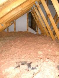 Attic floor possible?   HouseRepairTalk