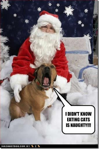 funny-dog-pictures-eating-naughty