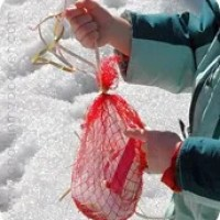 DIY Nesting Material Dispenser | Backyard Birding with Kids