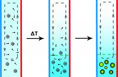 thermal diffusion column production of protocell-like vesicles