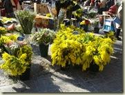 uzes flower stall_1_1