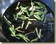 wild asparagus omelette 2_1_1