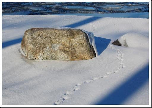 rock and footprints