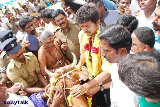 Vijay donates cow following the pooja