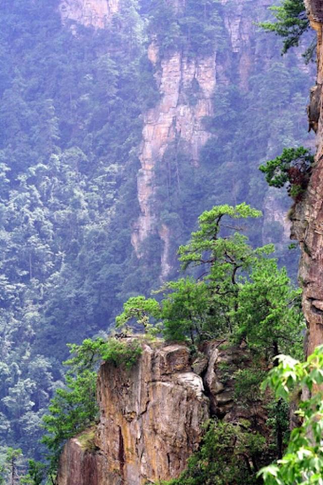 zhangjiajie (11)