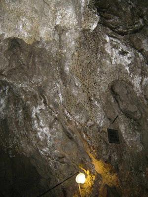 Piele de leopard pe peretii pesterii