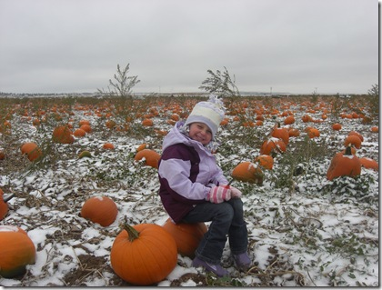 Halle in the pumpkin field