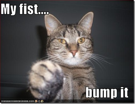 funny-pictures-cat-offers-fist