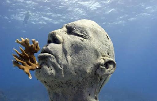 museum bawah laut 2