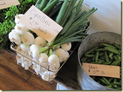 cipollini onions from Chase's