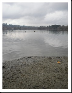 32° giorno - deer lake park (114)