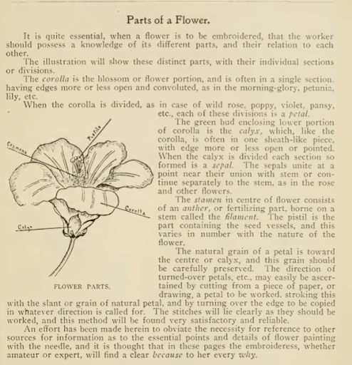 parts of a flower diagram and discussion