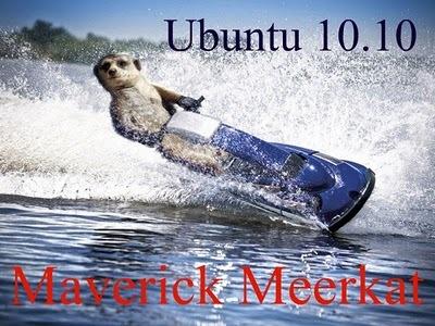 Meerkat-jetski