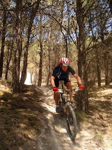 Más trialeras bajando el páramo entre pinares