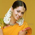 Hot telugu spicy actress photos