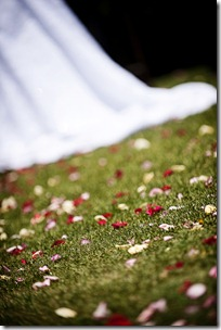 CA-Wedding--231