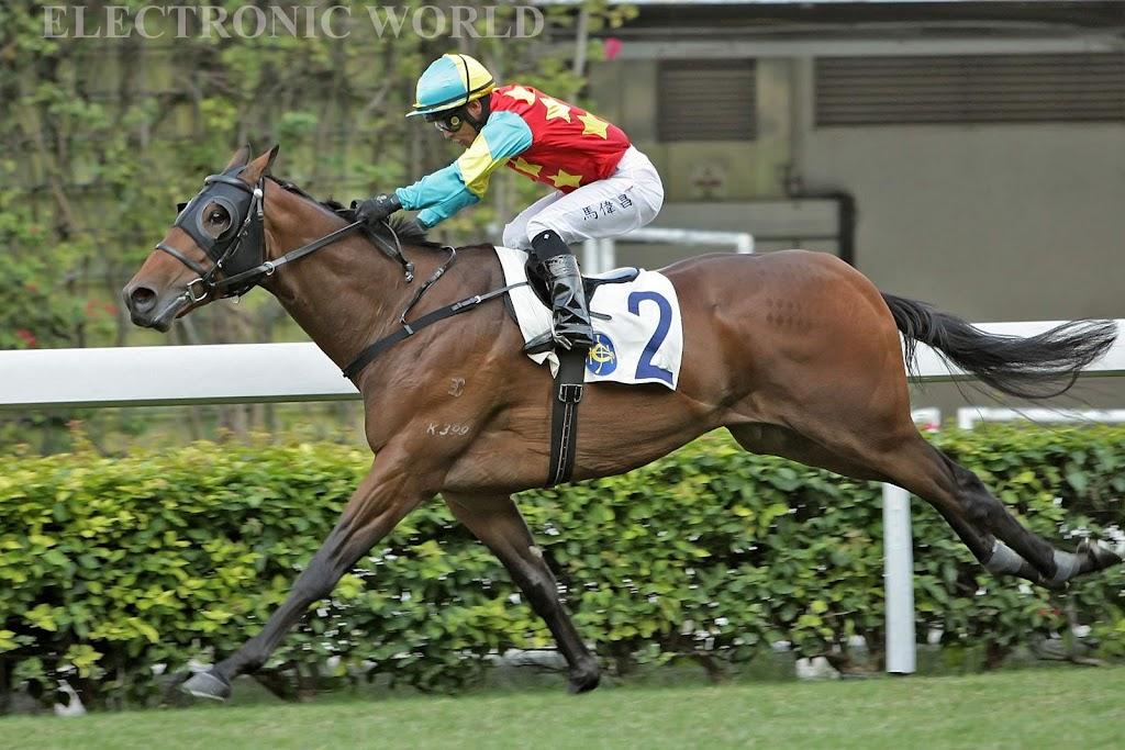 Racing Diary 2009 ~ N o w: 2010-10-31谷草日馬
