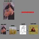 Klapa Snel Hest APK